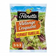 Florette mélange croquant format familial 350g