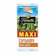 Florette coriandre 30g