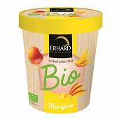 Erhard pot sorbet mangue bio 325g