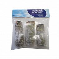 Queues de langouste des caraïbes x3 350g