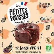 Les Petites Pousses fondant chocolat bio 2x80g