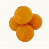 Orange à jus bio vrac