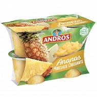 Andros dessert d'ananas pommes et fruits de la passion avec morceaux 4x100g