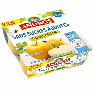 Andros sans sucre ajouté pomme nature 4x100g offre découverte