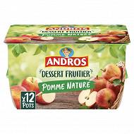 Andros dessert de pomme nature 12x100g