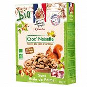 Georgelin croc4noisette bio sans gluten 375g