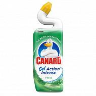 Canard gel action intense ftresh 750ml