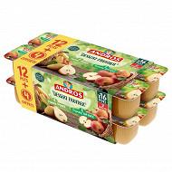 Andros dessert panaché pomme nature + pomme poire 12x100g +4 offerts