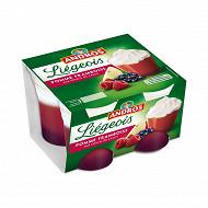 Andros spécialité de fruits de pomme et de framboise sur coulis de cassis et crème fouettée 4x100g