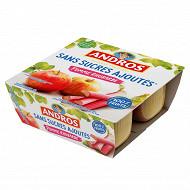 Andros spécialité de pommes et de rhubarbe 4x100g sans sucres ajoutés
