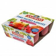 Andros spécialité de pommes et de framboises 4x100g sans sucres ajoutés