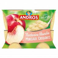 Andros dessert de fruits nectarine pêche blanche avec morceaux 4x100g