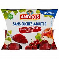 Andros pomme cerise sans sucre ajouté morceaux 4x97g