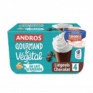 Andros gourmand & végétal liégeois chocolat 4x90g
