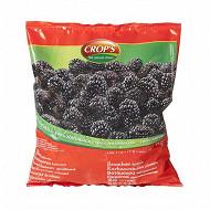 Crop's Mûres 1kg