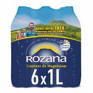 Rozana eau naturelle naturellement gazeuse 6 x 1l