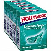 Hollywood fresh eucalyptus 70g sans sucres