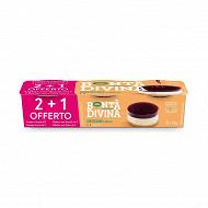 Bonta Divina cheesecake myrtilles 2x85g +1 gratis