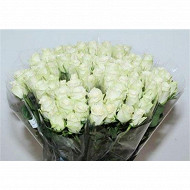 Bouquet 7 roses blanches gros bouton