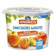 Andros sans sucre ajouté pomme fruits du verger pot 600g