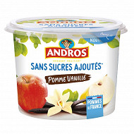Andros dessert fruitier sans sucre ajouté pomme vanille 600g