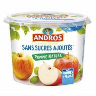 Andros dessert fruitier sans sucre ajouté pot pomme nature 600g