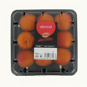 Abricots Cora dégustation barquette 9 fruits