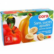 Cora gourdes purée de pomme banane sans sucres ajoutés 6 x 90g