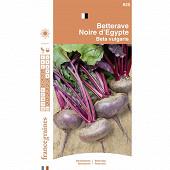 France graines betterave potagère plate d'egypte