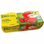 Nature Bio pot pomme framboise 4/6 mois 120g x2