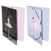 Chemise elastiques 3 rabats carte pellicule 24x32 ballerine assortis