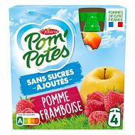 Pom'potes sans sucres ajoutés pomme framboise 4x90g