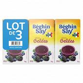 Béghin Say sucre spécial gelée au sucre blanc lot de 3x1kg
