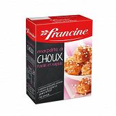 Francine pâte à choux 340g