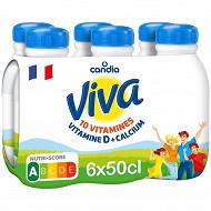 Viva lait bouteille 6x50cl
