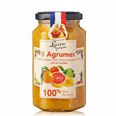 Lucien Georgelin préparation fruit 5 agrumes 100% 300g