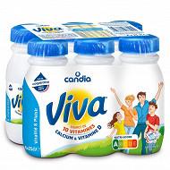 Viva lait vitaminé UHT bouteille 6 x 25 cl