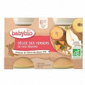 Babybio délice de fruits sans gluten dès 6 mois 2x130g