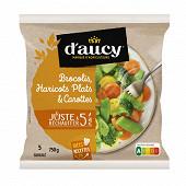 D'aucy mélange brocolis haricots plats carottes jaunes juste à réchauffer 750g