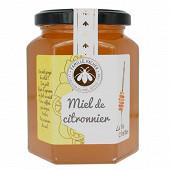 Cote miel miel de citronnier 375g
