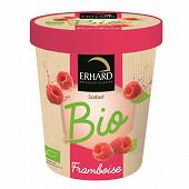 Erhard pot sorbet framboise bio 325 g