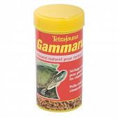 Tétra gammarus 25g-250ml