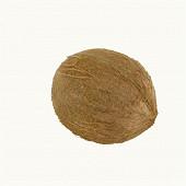 Noix de coco bio