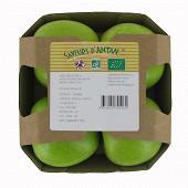 Pomme granny bio barquette 4 fruits