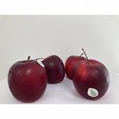 Pomme bicolore story bio