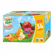 Pompotes 5 fruits jaunes et 5 fruits rouges 36x90g