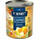 St mamet cocktail de fruits sirop léger 4/4 500g net égoutté
