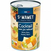 St Mamet cocktail de fruit 1/2 250g net égoutté