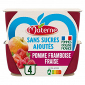 Materne ssa pomme framboise fraise 4x100g