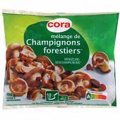 Cora mélange champignons forestiers 450g